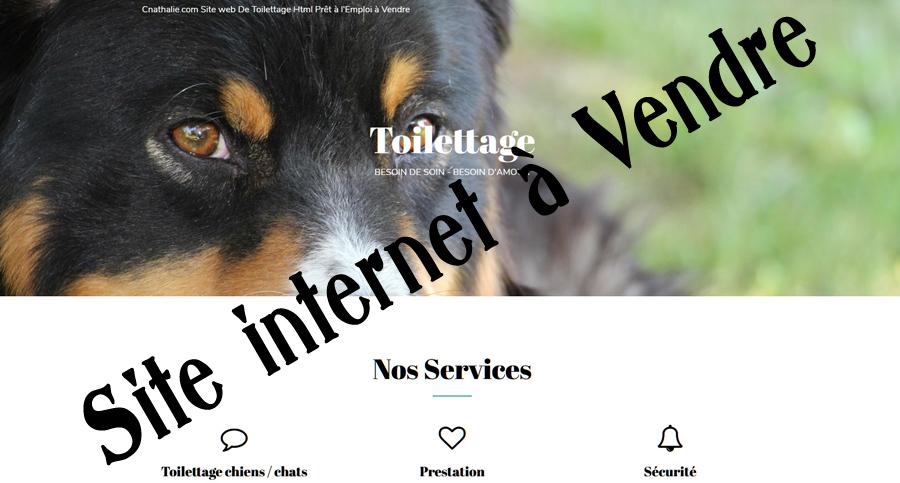 Cnathalie Site Web HTML Salon De Toilettage Prêt À L'emploi En Vente