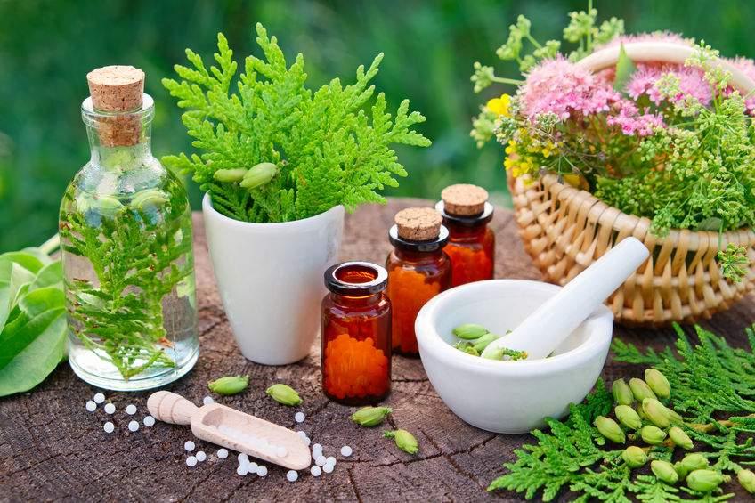 Plantes médicinales bienfaits